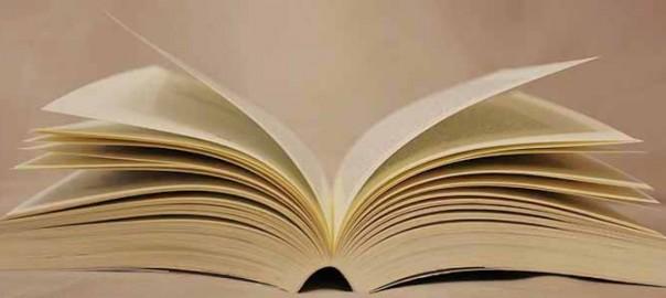 mamatieneunplan-librosparadeciradios